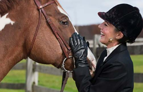 Equine Probiotic Care & Hygiene