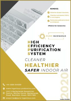 Air Purification Brochure