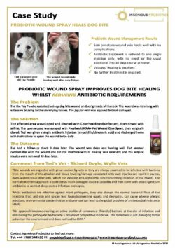 LUCAA+ Probiotic Pet Wound Care - Dog Bite Case Study