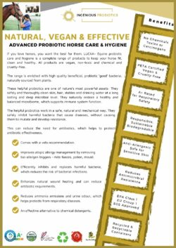 LUCAA+ Probiotic Equine Products - Flyer